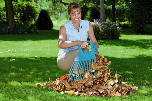 Jesień w ogrodzie - eksplozja kolorów