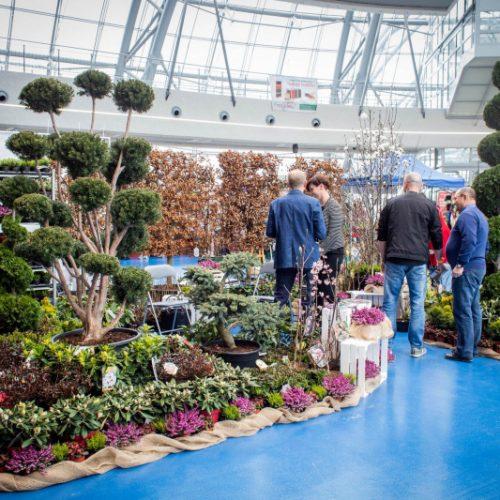 Garden-Expo-2019
