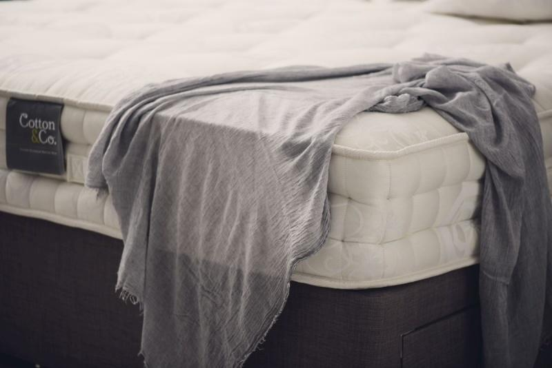 Cotton&Co. - zjednoczone królestwo snu
