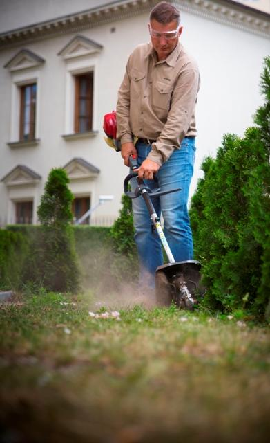 Czy warto zakładać nowy trawnik jesienią?