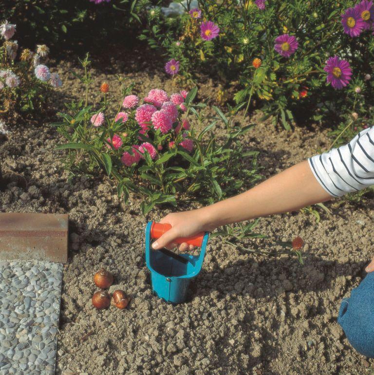 Jesień w ogrodzie - niezbędnik ogrodnika