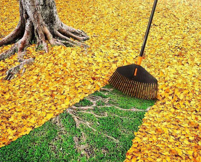 Innowacyjne rozwiązania do domowego ogródka