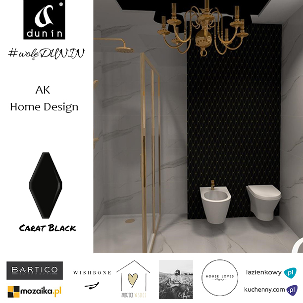 #woleDUNIN 2018 AK Home Design