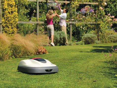 Letnie pogotowie pielęgnacji trawnika