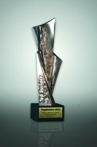 Nagroda Topbuilder 2013