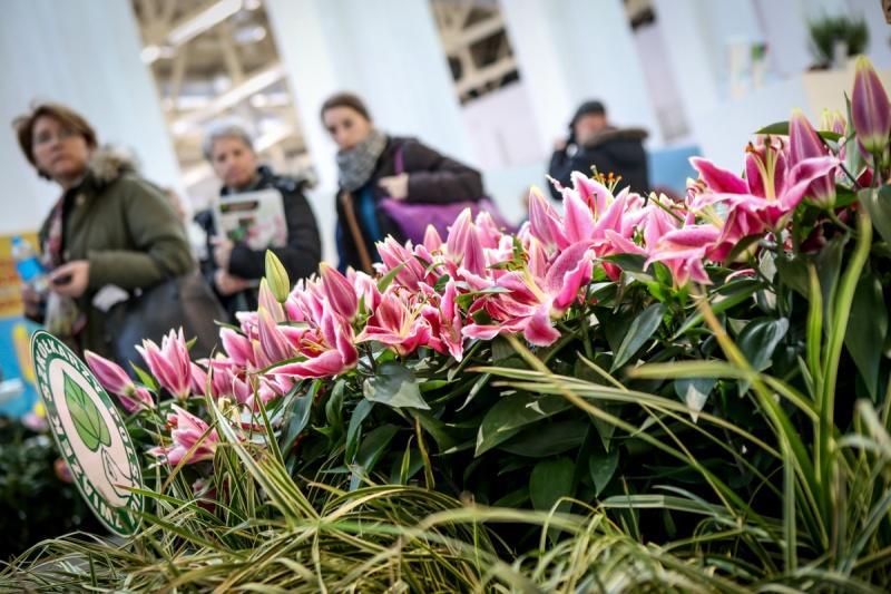 Najnowsze trendy ogrodnicze, na które warto zwrócić uwagę w 2017 roku