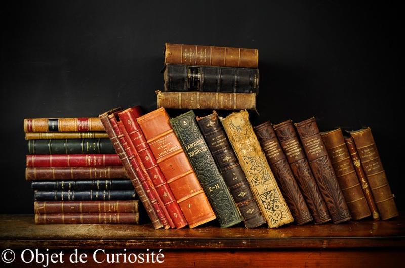 Objet de curiosité - dodatki inspirowane naturą