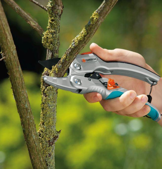 Przycinanie krzewów i żywopłotów bezprzewodowo