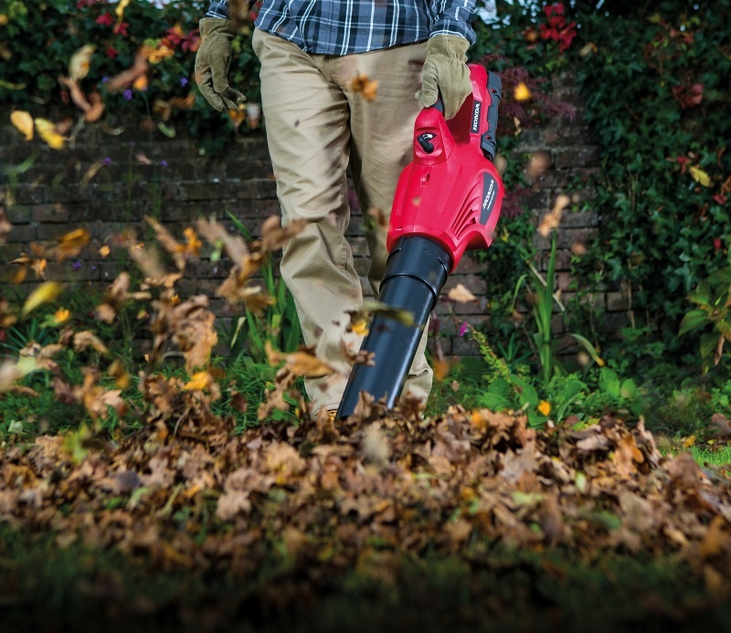 Sezon na liście – jak je sprzątać bez wysiłku?