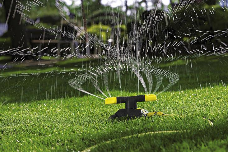 Trawnik pod łupą