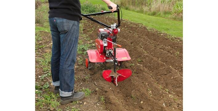 Trawnik z przyszłością.  Dlaczego warto założyć trawnik na jesieni.