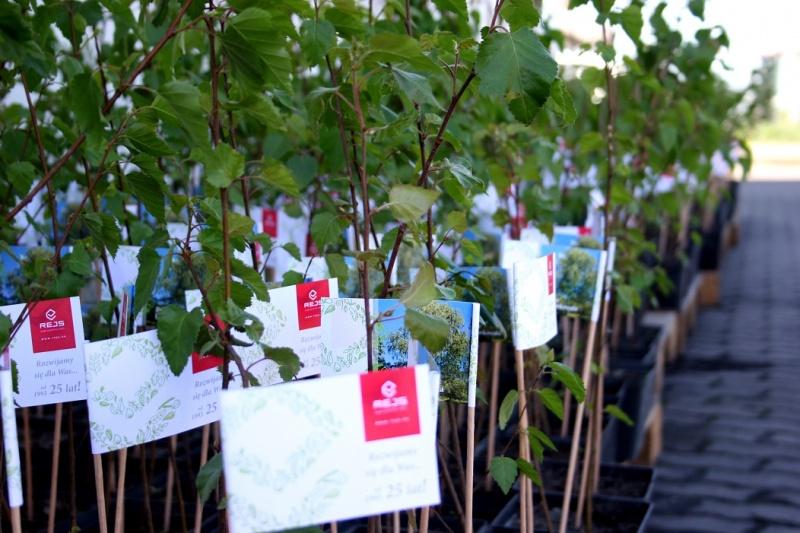 Tysiąc drzew na urodziny REJS