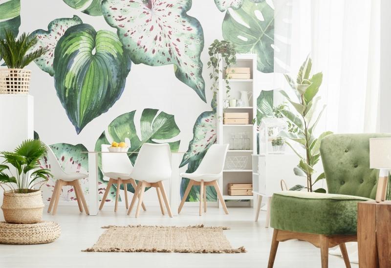 Urban jungle, czyli dom pełen zielonej energii
