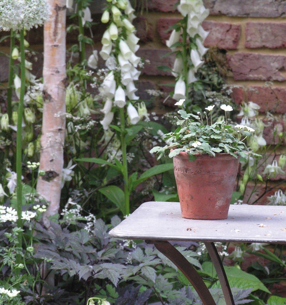 Ogród w naturalnym stylu