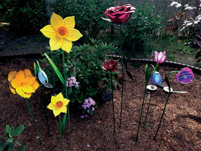 fot. Aurora Garden