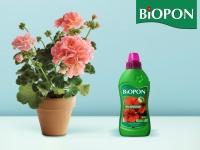 biopon-plyn-pelargonie-podglad-15-05-18-2018-mu